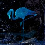 人間の隠した痛い本性をあぶり出せ!! 人気ボカロPのsyudouが2ndアルバム「必死」に詰め込んだのは、あなたの隠したい心の素顔!!
